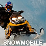 A Ski Do / Snow Mobile