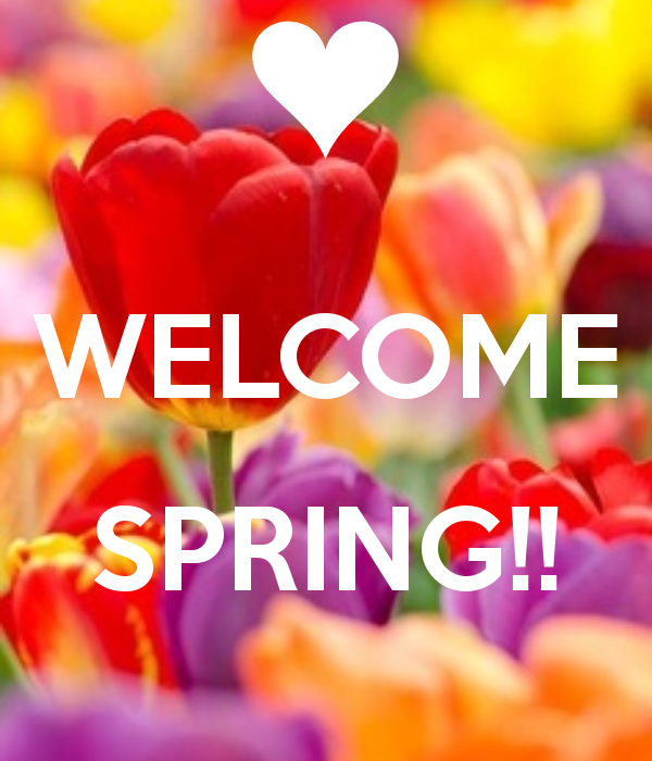 simply lavish welcome spring