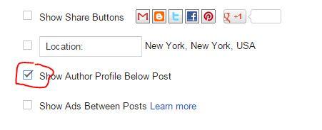 tampilkan kotak author profil blogger