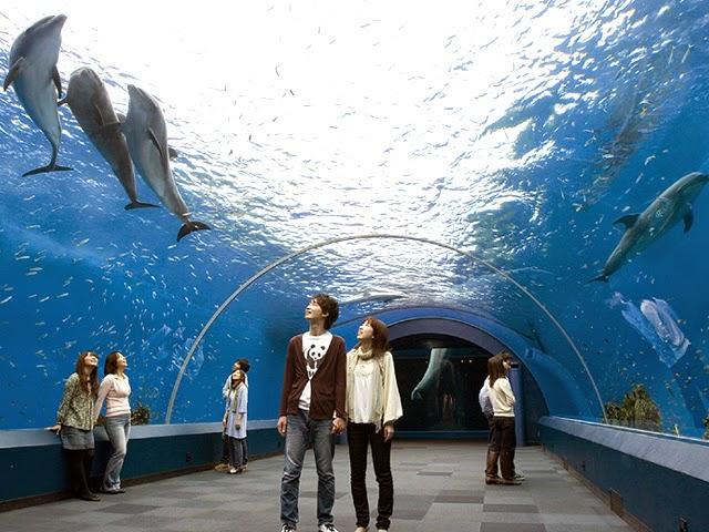 Yokohama Hakkeijima Sea Paradise, Japan