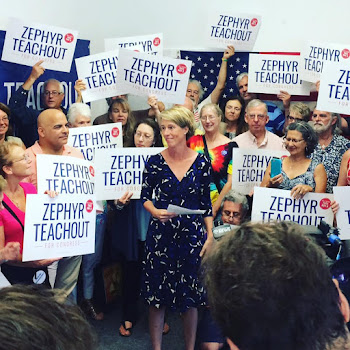 Corruption Crusader Zephyr Teachout Works NY 19