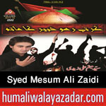 http://www.humaliwalayazadar.com/2015/10/syed-mesum-ali-zaidi-nohay-2016.html