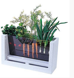 My First Garden 5 Innovative Indoor Apartment Gardening Ideas