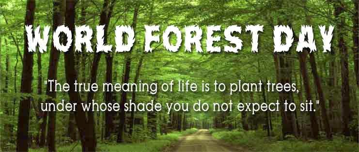 World Forestry Day -MARCH 21