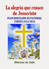 Plan Diocesano de Pastoral 2.014-16