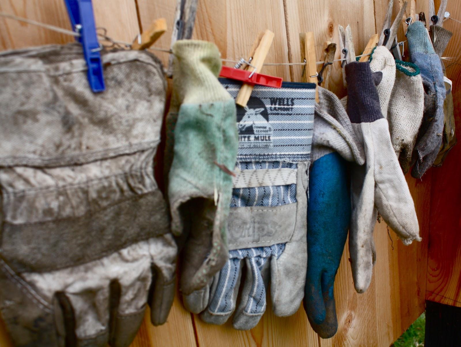 Hanging gloves