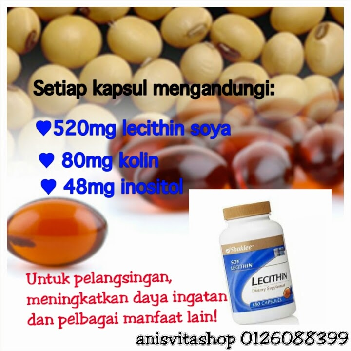 manfaat lecithin