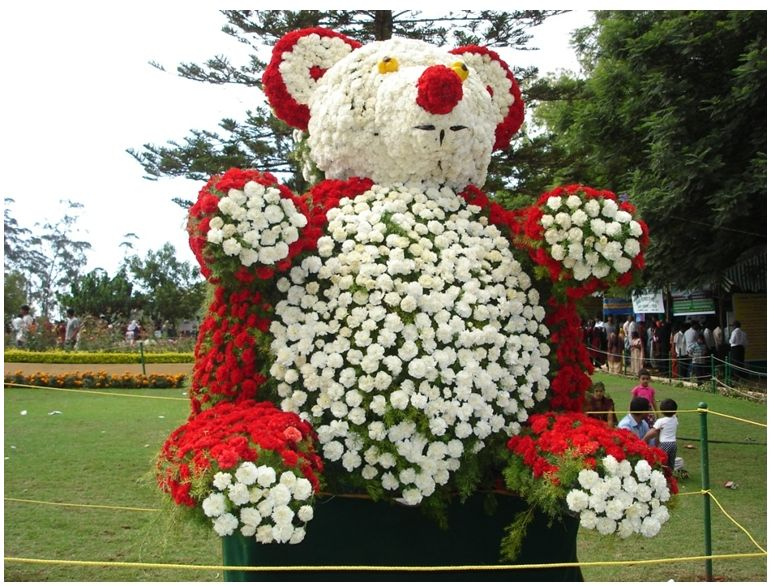 Ooty Rose Show Photos