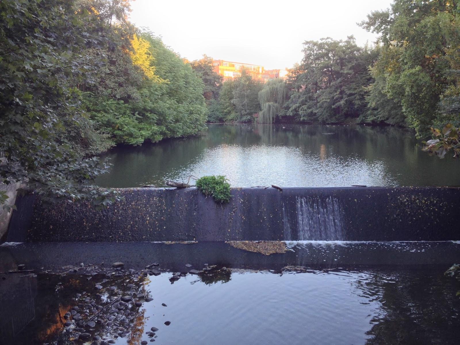 Stauwehr, Teich, Wasser