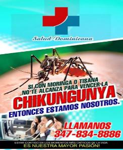 SALUD DOMINICANA