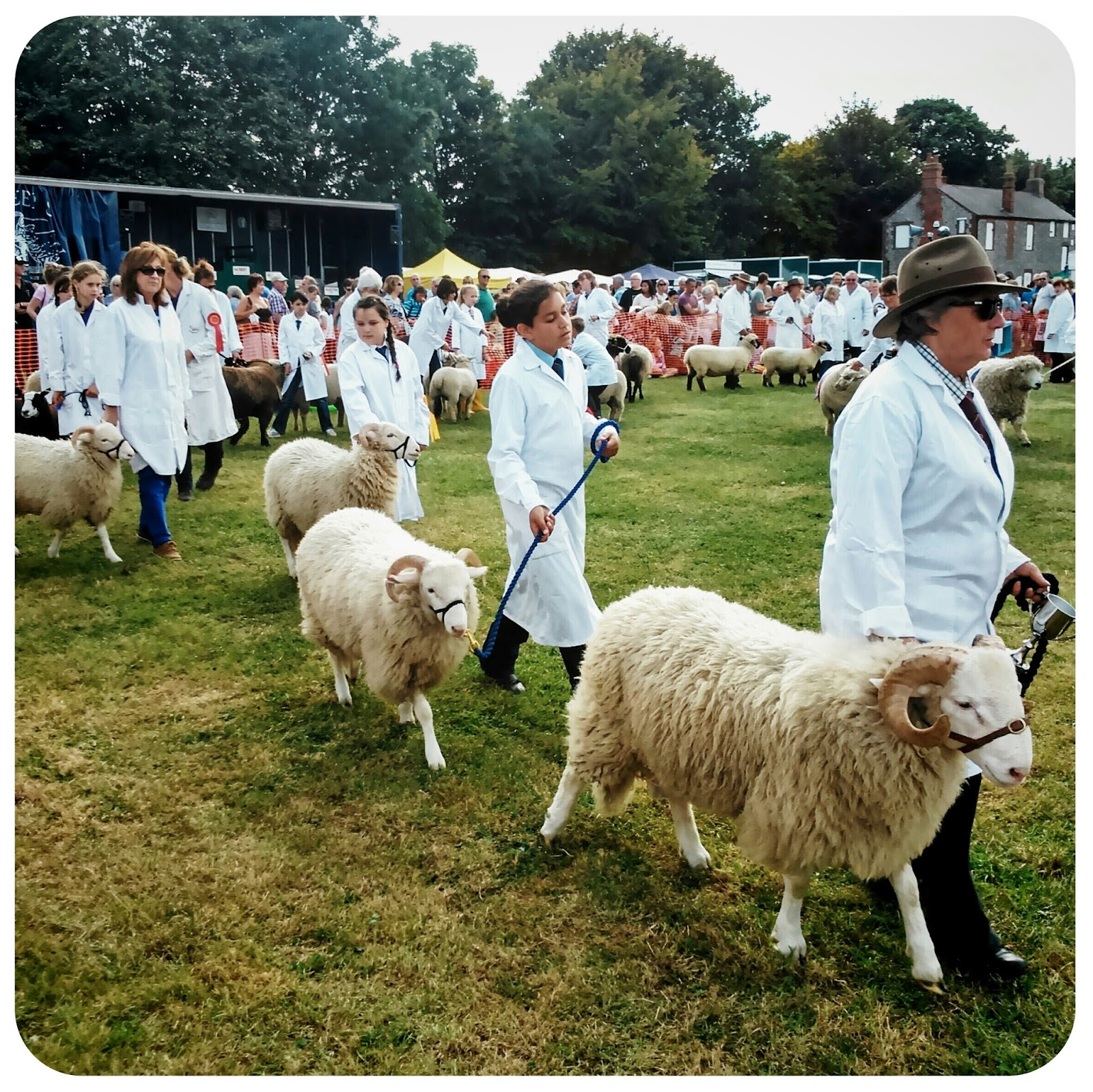 The Sheep Parade, Findon Sheep Fair 2014