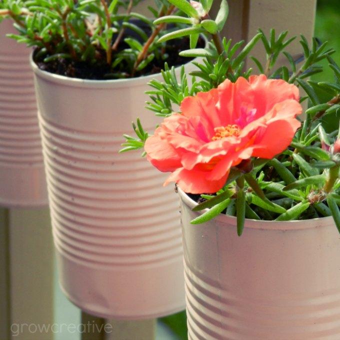 Grow Creative Blog: Vertical Tin Can Planters Tutorial