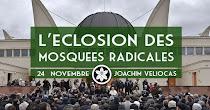 L'éclosion des mosquées radicales, Joachim Veliocas