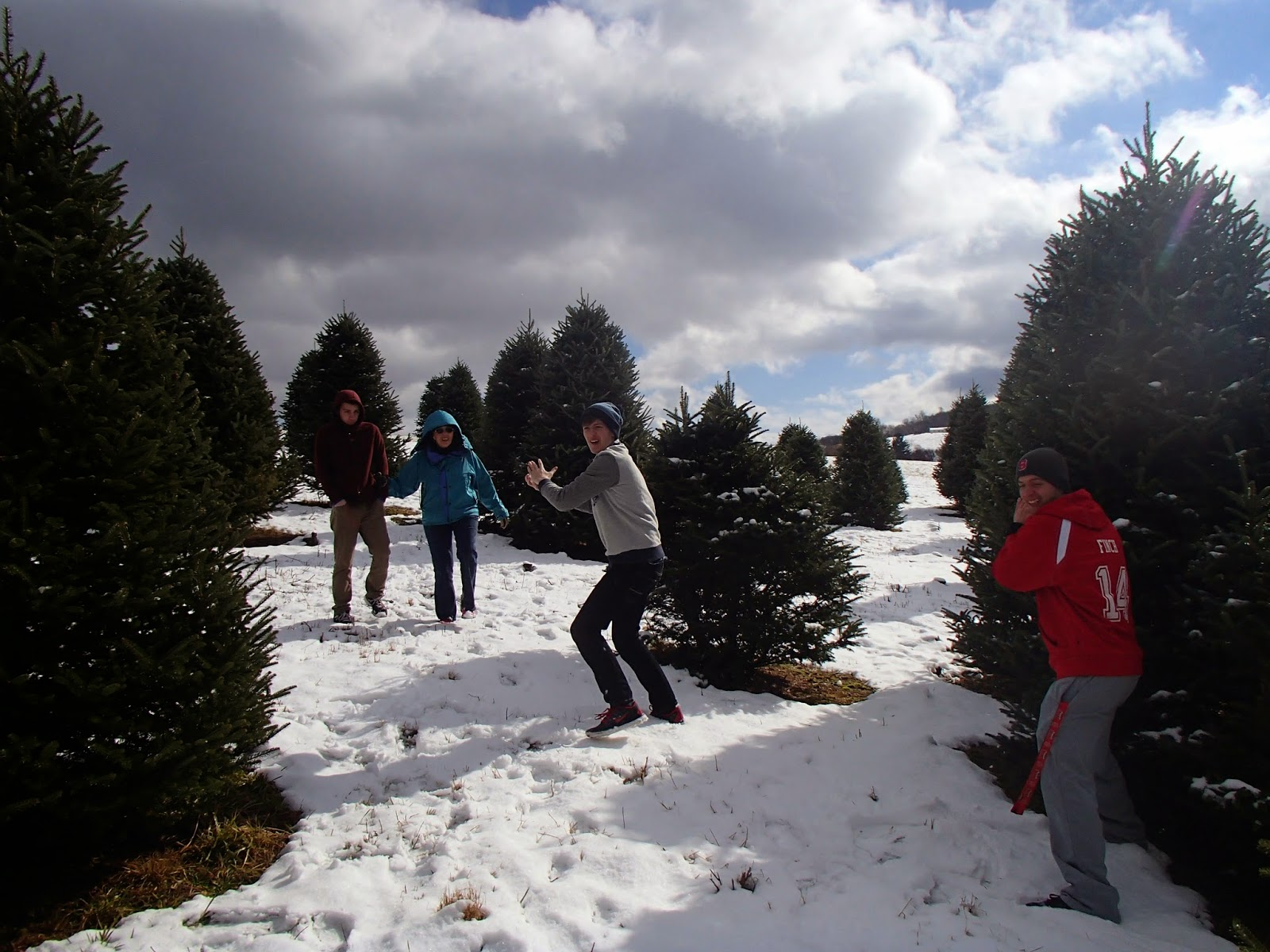 Snowball Fight | Navigating Hectivity by Micki Bare