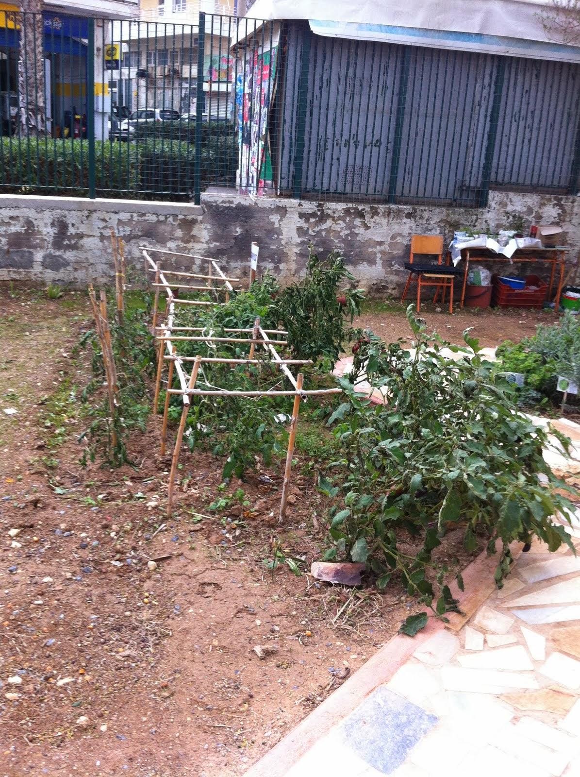 Ο κήπος μας