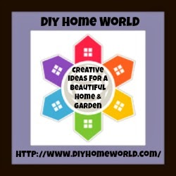 I am featured in Diy Home World