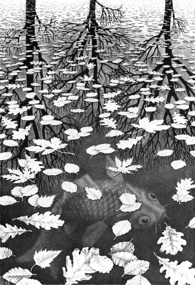 M.C. Escher - Three worlds - December 1955 - Lithograph