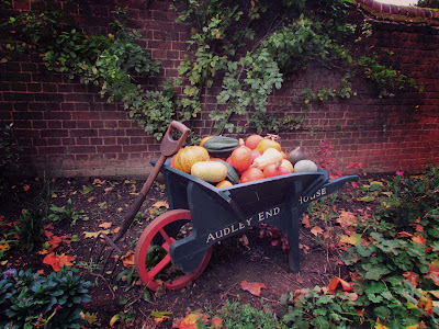 bookandacuppa, book and a cuppa, book & a cuppa, yellow, red, orange, marrows, pumpkins, butternut squash, vegetables, soft focus, photography, Halloween, garden, farmer, countryside, UK, Audley End, Essex, Autumn, Fall, colourful, spade, gardening