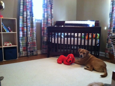 Dog in front of baby crib