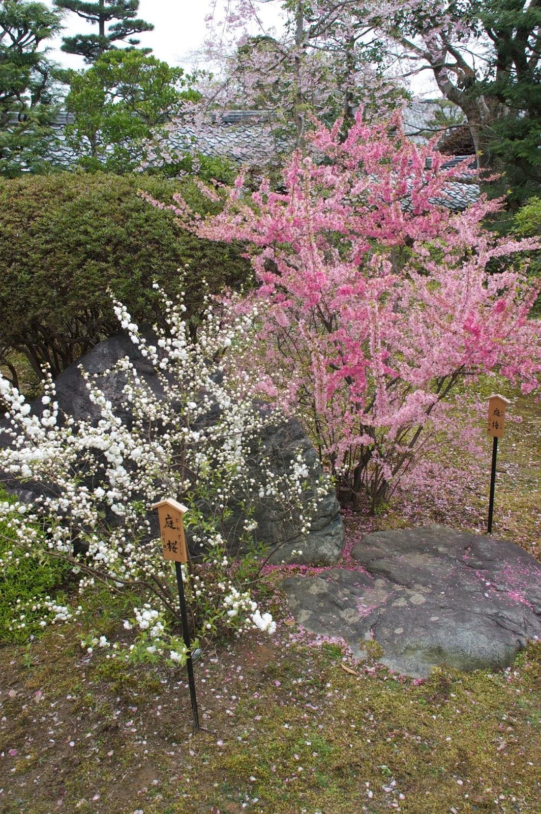 Robert Ketchells Blog Symbolism And The Japanese Garden Part 3