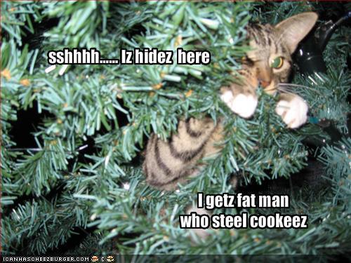 Photobucket funny christmas Pictures funny christmas Images