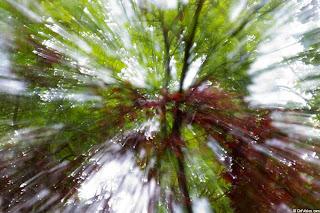 focus blur effect