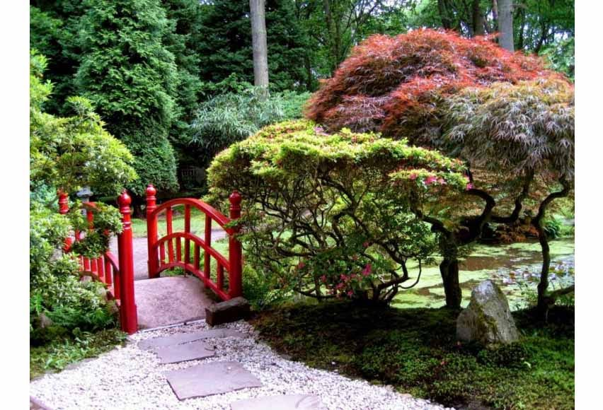 anderson japanese gardens in rockford illinois provides a place of