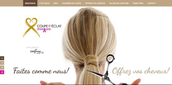 book scrap don de cheveux think pink pour lutter contre le cancer. Black Bedroom Furniture Sets. Home Design Ideas