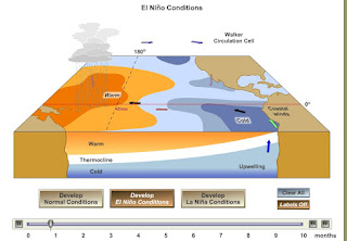 Aniamasi Proses terjadinya El Nino dan La Nina