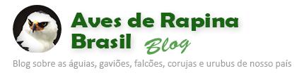 Blog Aves de rapina Brasil