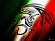 . un trote con la bandera de México