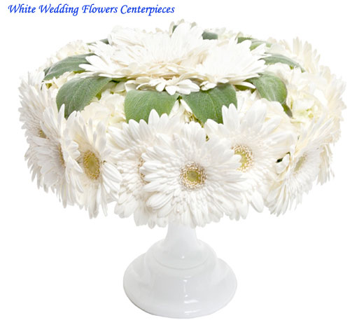 White Wedding Flowers Centerpieces Wedding Decorations