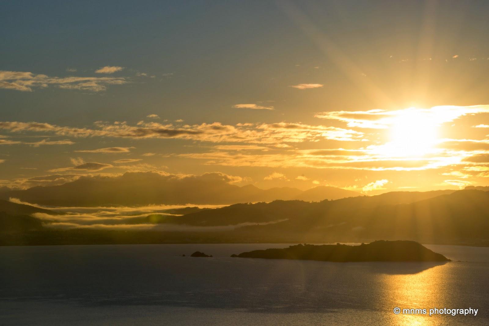 Daybreak Wellington Harbour