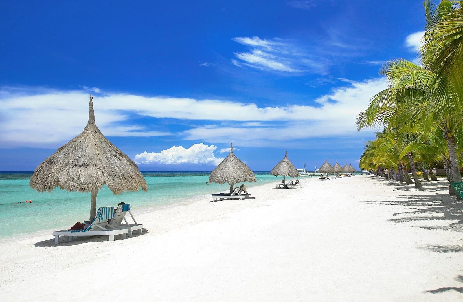 Bohol virgin island pictures Get