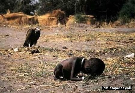 Kevin Carter Controversy Picture