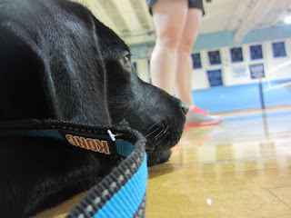 At the end of the day, Coach looks on from the gym floor as the retreat winds down.