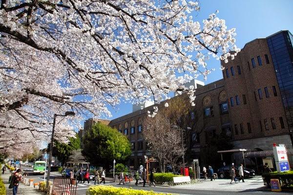 Trường đại học Tokyo Nhật Bản