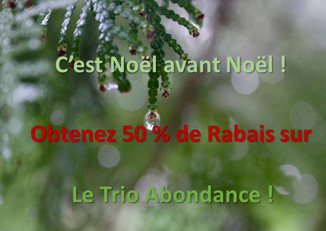 NOEL À L'AVANCE ** TRIO-ABONDANCE !!!