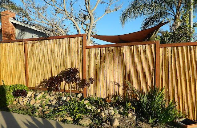 Bamboo Fence6