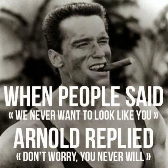 Arnold+Replied.jpg