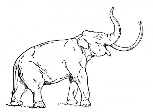Mammoth Coloring Pages Free