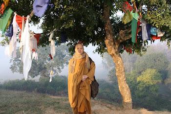 Gambar Bhante Candasilo Thera di Sravasti India