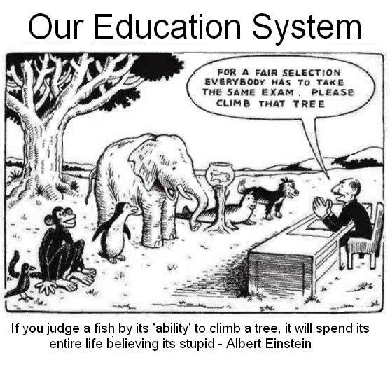 Essay education system