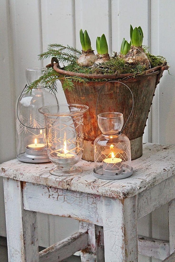 Tuindesign: 20 leuke decoratie ideeën met hyacinten