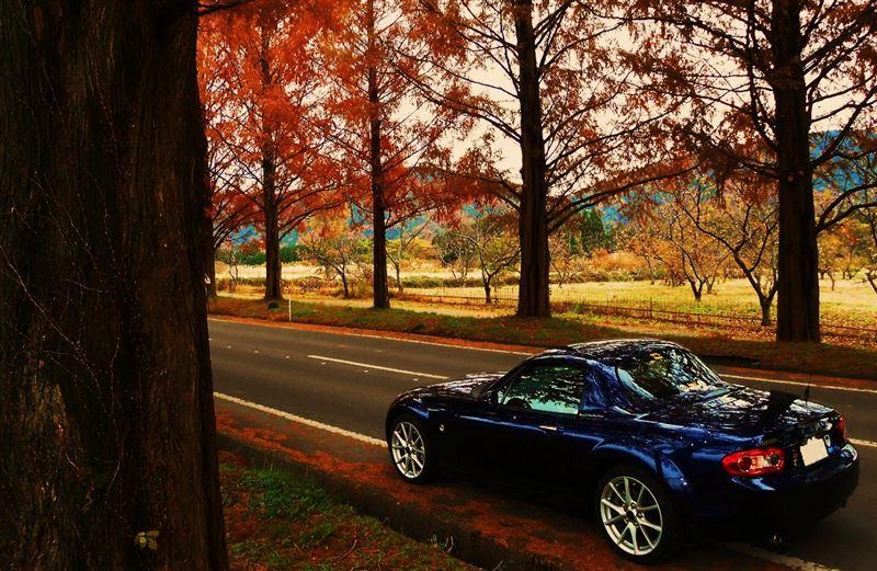 マツダ, オープンカー, 日本車, チューニングカー, スポーツカー, Mazda MX-5, Eunos Roadster, Miata, JDM, tuning, zdjęcia, ikona, kultowy, japoński sportowy samochód, zdjęcia, jinba ittai, trzecia generacja, NC