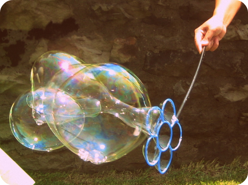 Crossing the bugger dixon line unique party ideas for Bubble wand