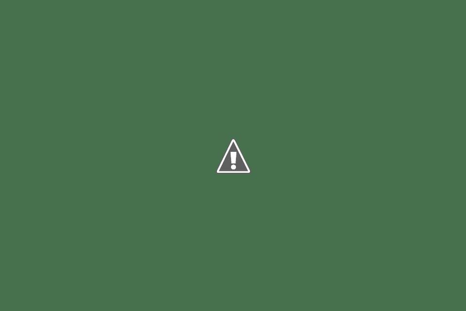 castagnole alla ricotta, al forno, alle patate ...castagnole per tutti!!