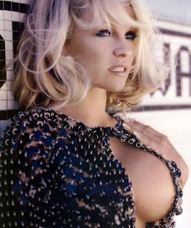 Pamela Anderson Hot Pictures - Pamela Anderson Wallpapers