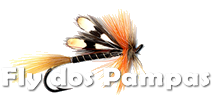 Fly Fishing dos Pampas