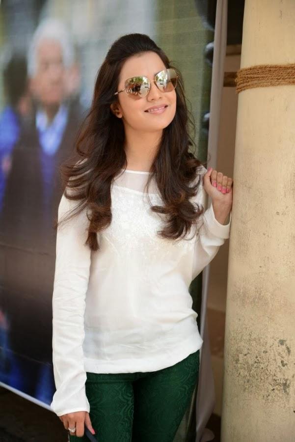 Nisha Aggarwal perfect size zero body